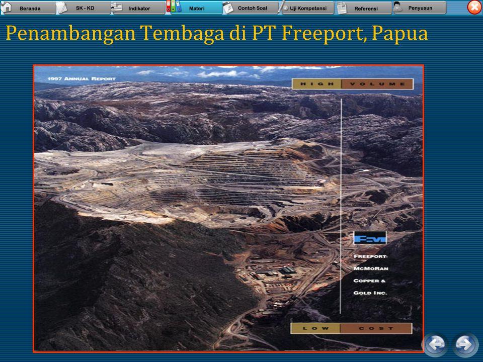Contoh Mineral Pembentuk Batuan diantaranya memiliki nilai ekonomis untuk komoditi karena unsur yang dikandungnya AnalcimeAndalusite Anhydrite Antimon