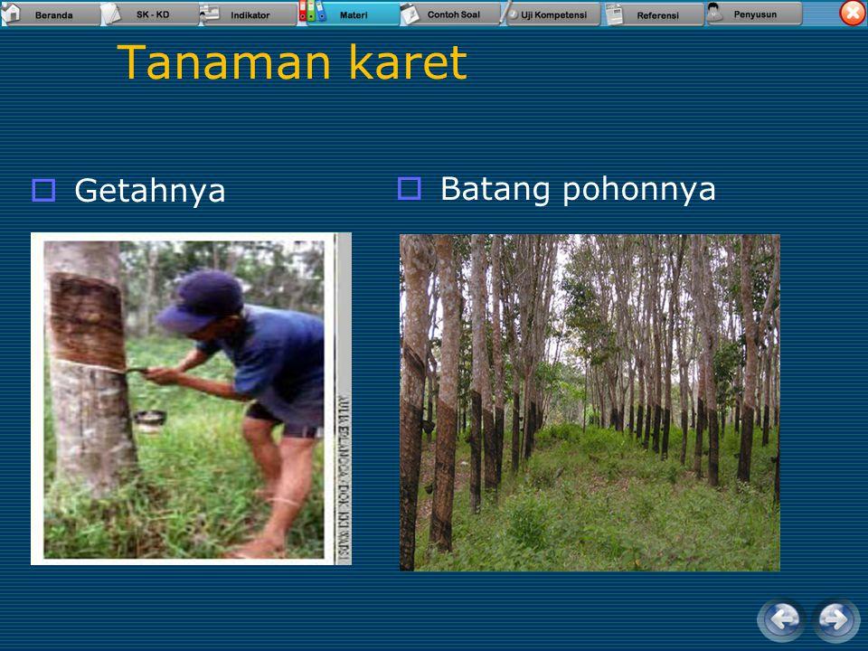 Sumberdaya hasil perkebunan  Buah Kelapa  Kulit kelapa  Janur kelapa  Batang pohon