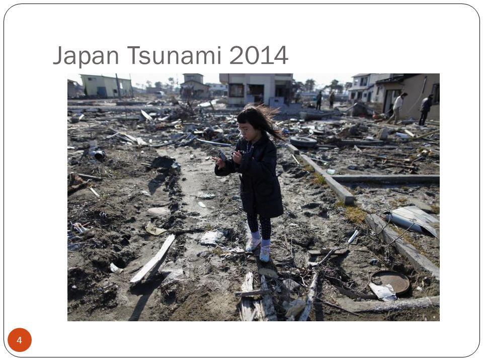Japan Tsunami 2014 4