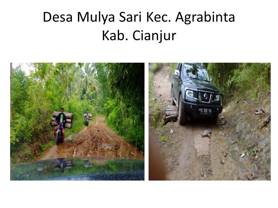 Desa Mulya Sari Kec. Agrabinta Kab. Cianjur
