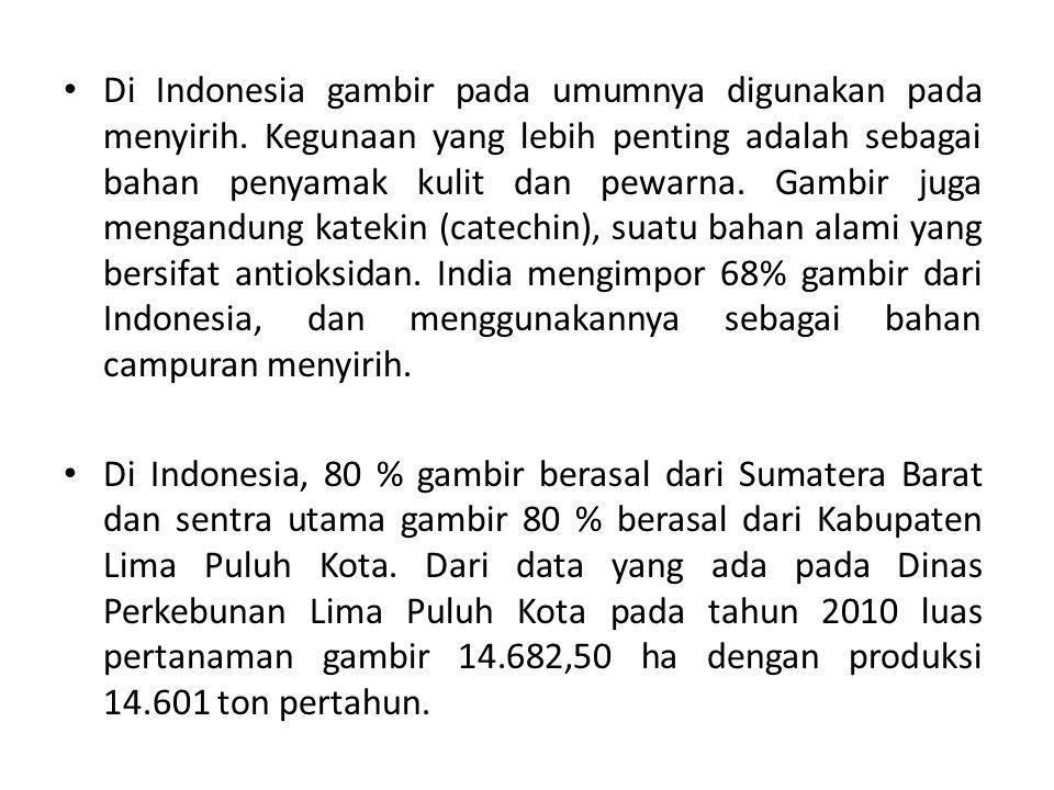 Di Indonesia gambir pada umumnya digunakan pada menyirih. Kegunaan yang lebih penting adalah sebagai bahan penyamak kulit dan pewarna. Gambir juga men