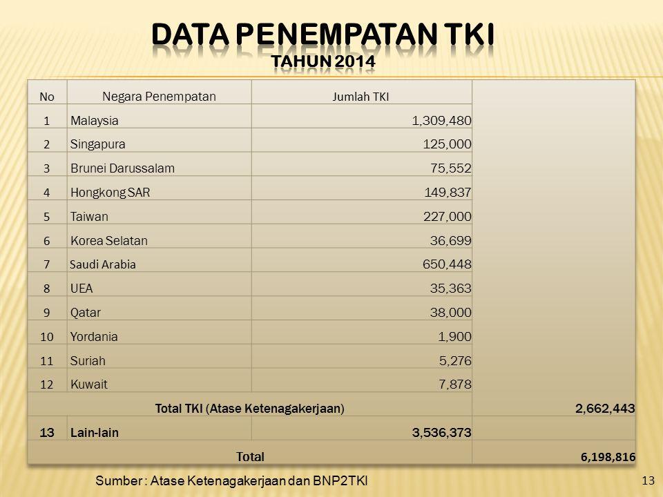Sumber : Atase Ketenagakerjaan dan BNP2TKI 13