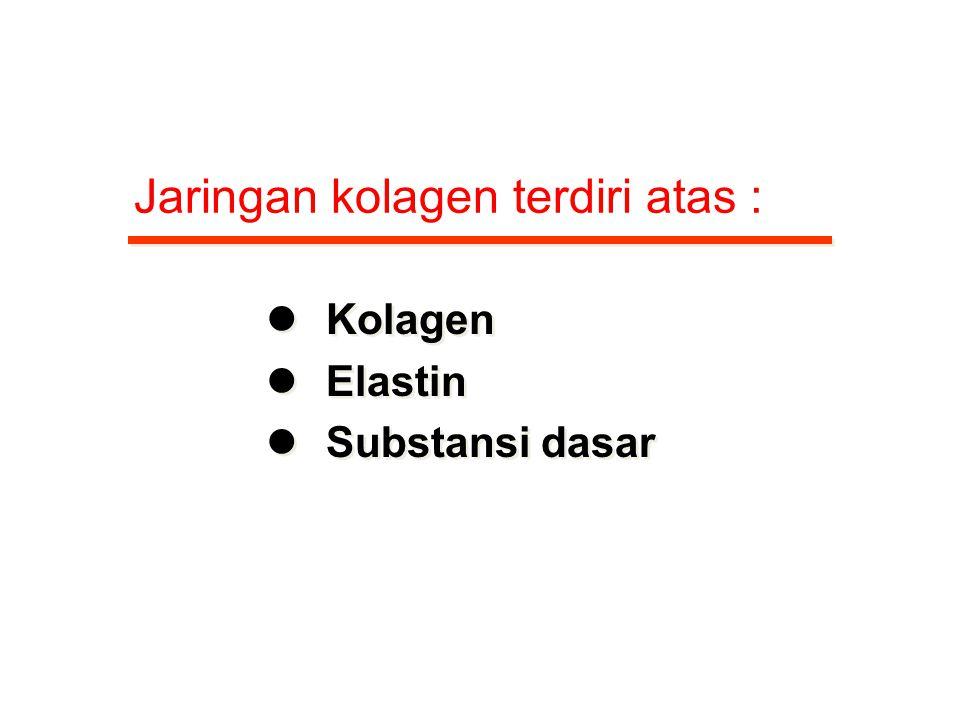 Jaringan kolagen terdiri atas : Kolagen Elastin Substansi dasar Kolagen Elastin Substansi dasar