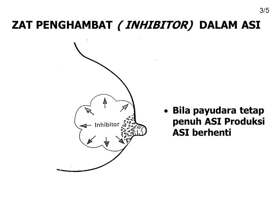  Bila payudara tetap penuh ASI Produksi ASI berhenti ZAT PENGHAMBAT ( INHIBITOR) DALAM ASI 3/5