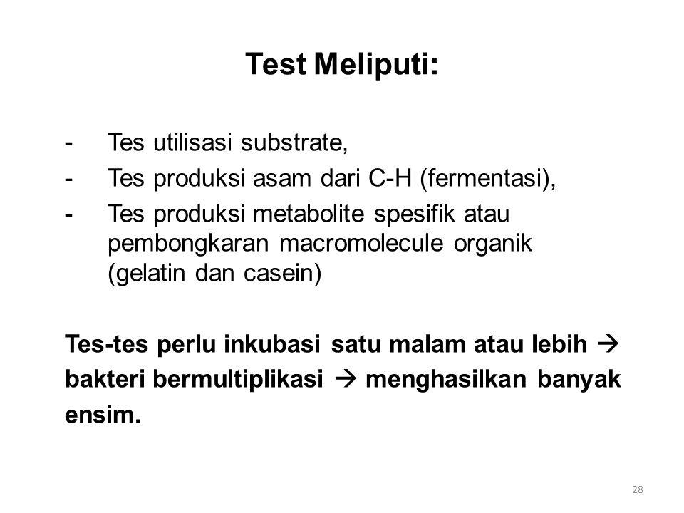 Test Meliputi: -Tes utilisasi substrate, -Tes produksi asam dari C-H (fermentasi), -Tes produksi metabolite spesifik atau pembongkaran macromolecule o