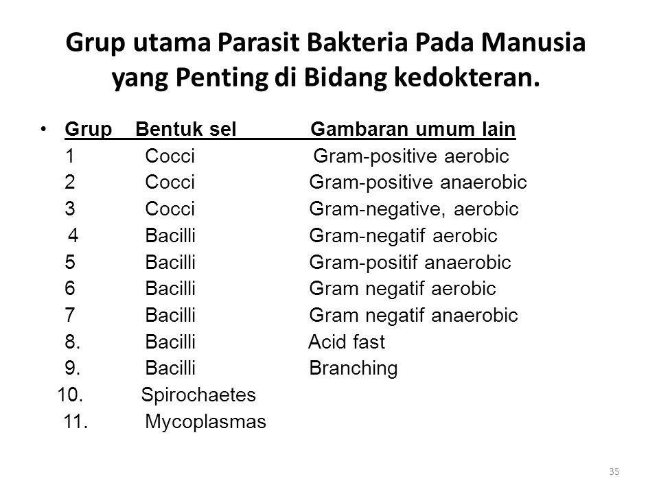 Grup utama Parasit Bakteria Pada Manusia yang Penting di Bidang kedokteran. Grup Bentuk sel Gambaran umum lain 1 Cocci Gram-positive aerobic 2 Cocci G