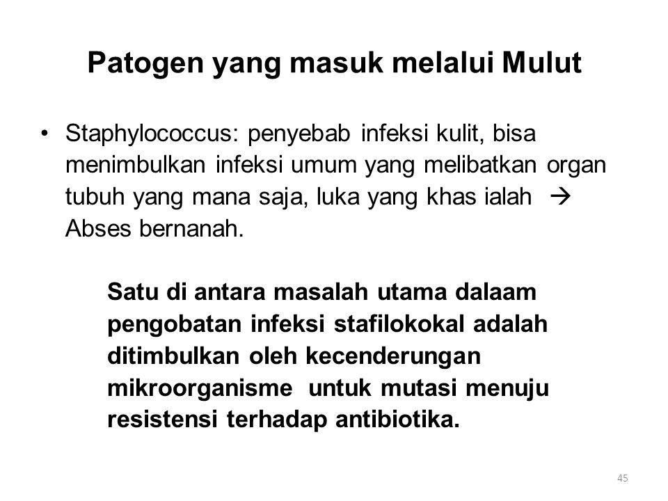 Patogen yang masuk melalui Mulut Staphylococcus: penyebab infeksi kulit, bisa menimbulkan infeksi umum yang melibatkan organ tubuh yang mana saja, luk