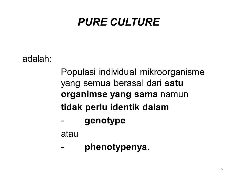 PURE CULTURE adalah: Populasi individual mikroorganisme yang semua berasal dari satu organimse yang sama namun tidak perlu identik dalam -genotype ata