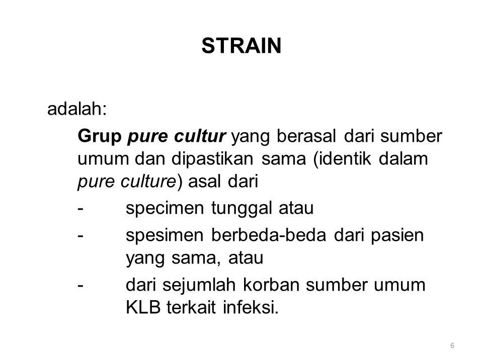 STRAIN adalah: Grup pure cultur yang berasal dari sumber umum dan dipastikan sama (identik dalam pure culture) asal dari -specimen tunggal atau -spesi