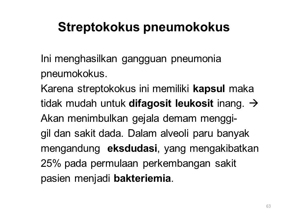 Streptokokus pneumokokus Ini menghasilkan gangguan pneumonia pneumokokus. Karena streptokokus ini memiliki kapsul maka tidak mudah untuk difagosit leu