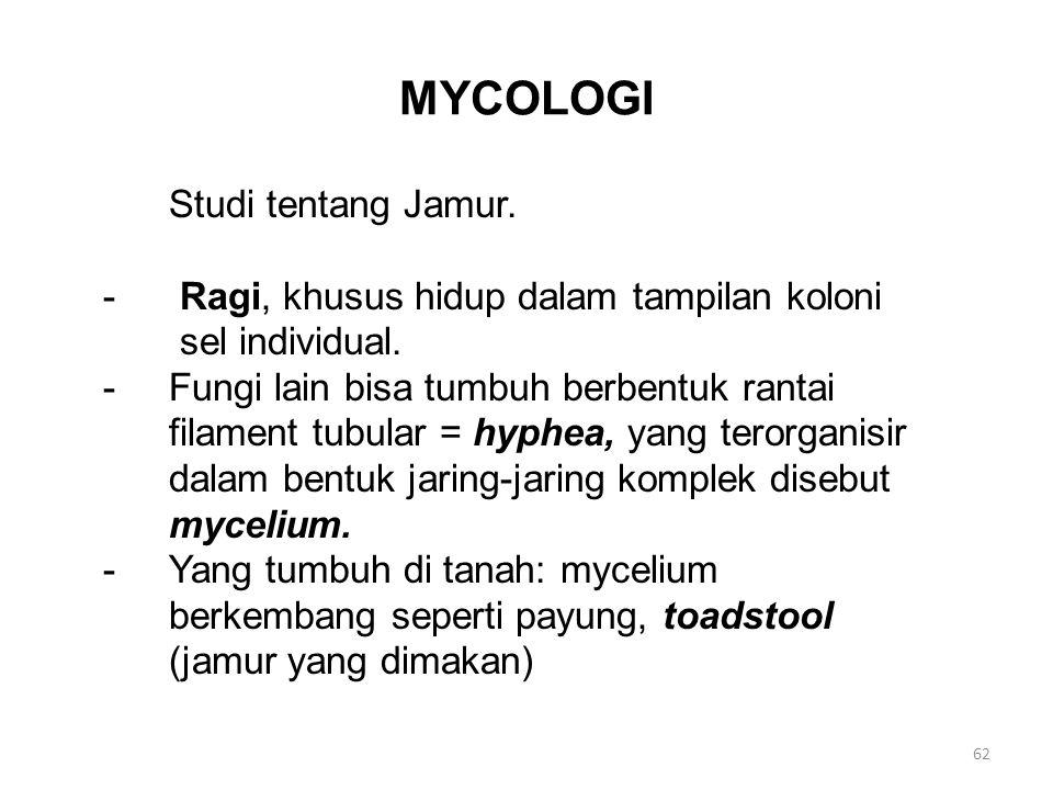 MYCOLOGI Studi tentang Jamur.- Ragi, khusus hidup dalam tampilan koloni sel individual.