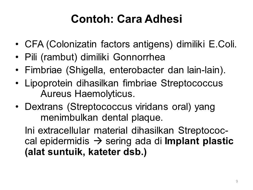 Contoh: Cara Adhesi CFA (Colonizatin factors antigens) dimiliki E.Coli.