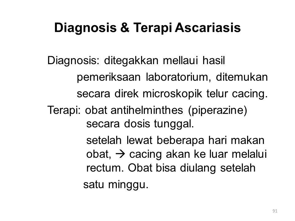 Diagnosis & Terapi Ascariasis Diagnosis: ditegakkan mellaui hasil pemeriksaan laboratorium, ditemukan secara direk microskopik telur cacing.