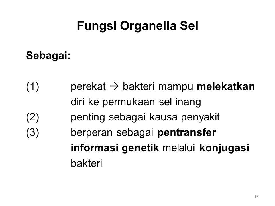 Fungsi Organella Sel Sebagai: (1)perekat  bakteri mampu melekatkan diri ke permukaan sel inang (2)penting sebagai kausa penyakit (3)berperan sebagai