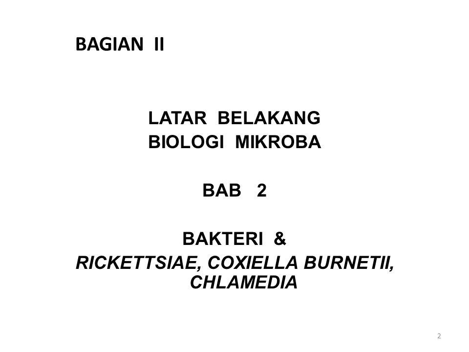 BAGIAN II LATAR BELAKANG BIOLOGI MIKROBA BAB 2 BAKTERI & RICKETTSIAE, COXIELLA BURNETII, CHLAMEDIA 2
