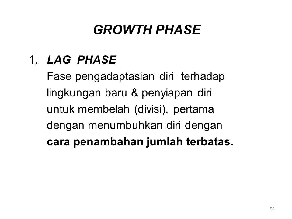 GROWTH PHASE 1.LAG PHASE Fase pengadaptasian diri terhadap lingkungan baru & penyiapan diri untuk membelah (divisi), pertama dengan menumbuhkan diri d