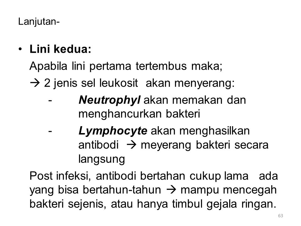 Lanjutan- Lini kedua: Apabila lini pertama tertembus maka;  2 jenis sel leukosit akan menyerang: -Neutrophyl akan memakan dan menghancurkan bakteri -