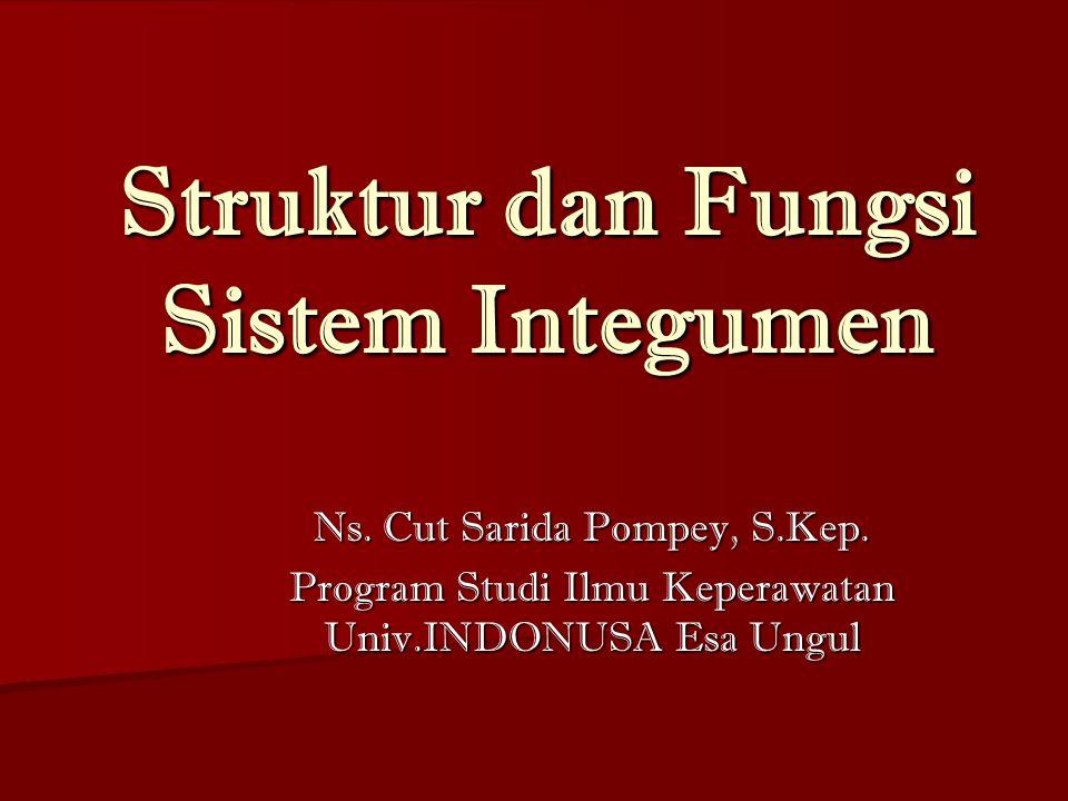 Struktur dan Fungsi Sistem Integumen Ns. Cut Sarida Pompey, S.Kep. Program Studi Ilmu Keperawatan Univ.INDONUSA Esa Ungul