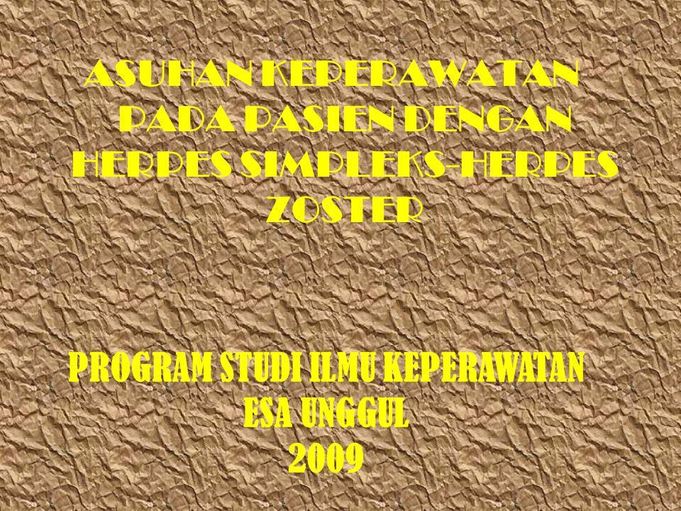 ASUHAN KEPERAWATAN PADA PASIEN DENGAN HERPES SIMPLEKS-HERPES ZOSTER PROGRAM STUDI ILMU KEPERAWATAN ESA UNGGUL 2009