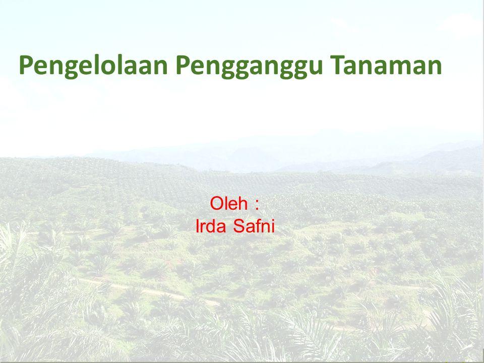 Gejala Busuk Pangkal Batang Tanaman kelapa Sawit G. Boninense pada batang kelapa sawit