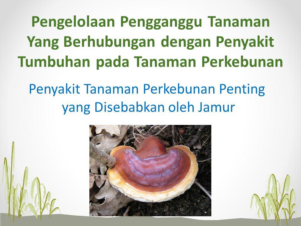 Pengelolaan Pengganggu Tanaman Yang Berhubungan dengan Penyakit Tumbuhan pada Tanaman Perkebunan Penyakit Tanaman Perkebunan Penting yang Disebabkan o