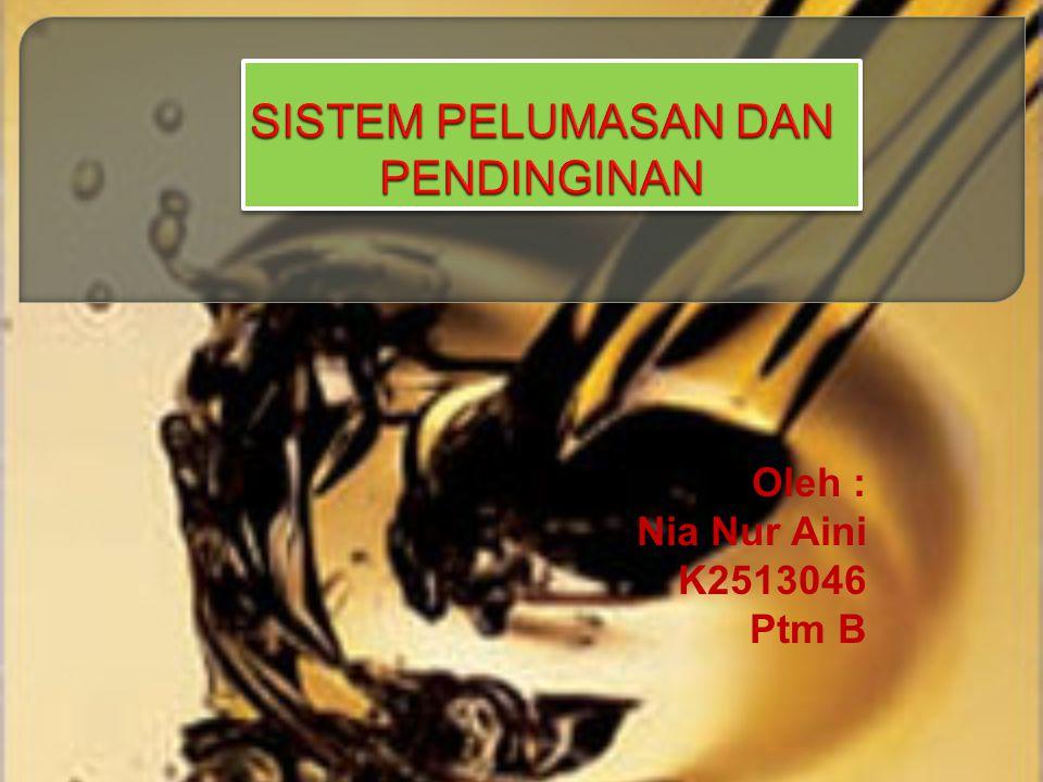 Oleh : Nia Nur Aini K2513046 Ptm B