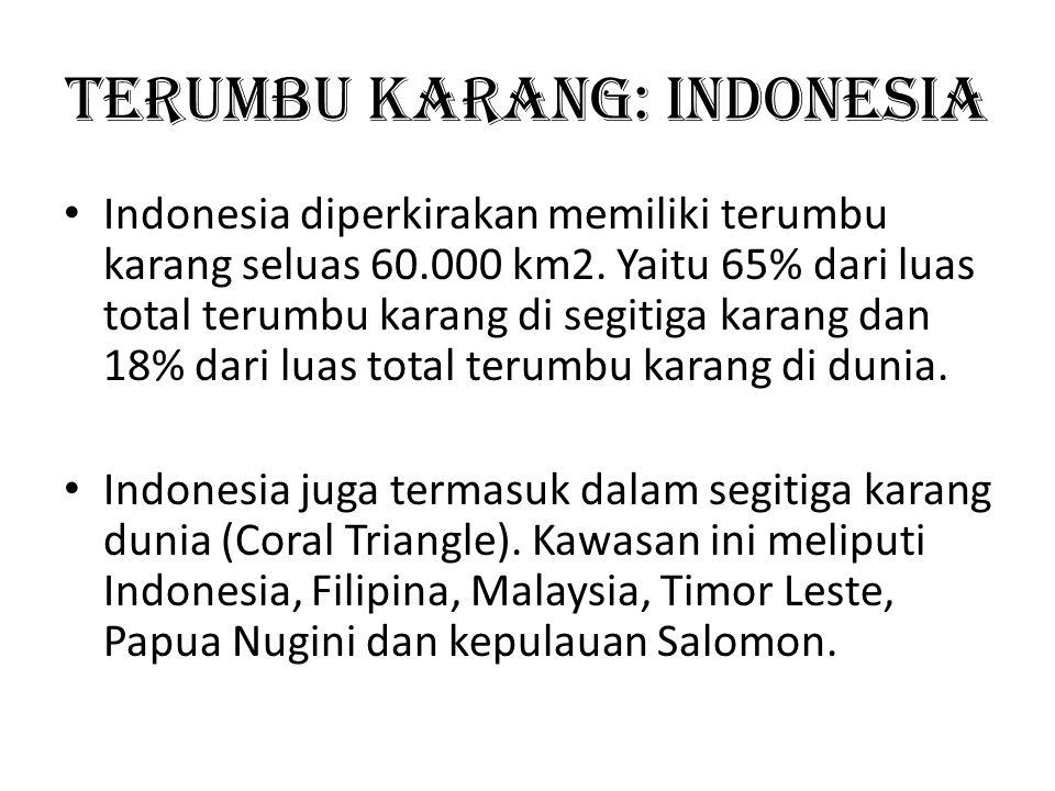 Terumbu Karang: Indonesia Indonesia diperkirakan memiliki terumbu karang seluas 60.000 km2. Yaitu 65% dari luas total terumbu karang di segitiga karan
