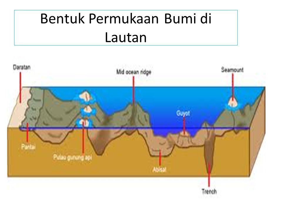Bentuk Permukaan Bumi di Lautan