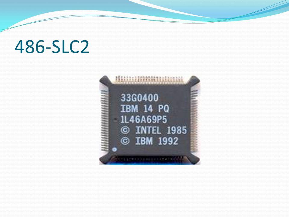 486-SLC2