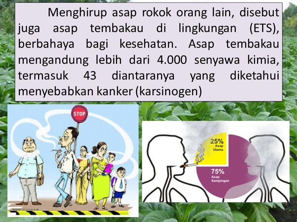 Menghirup asap rokok orang lain, disebut juga asap tembakau di lingkungan (ETS), berbahaya bagi kesehatan.