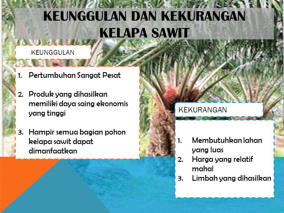 KEUNGGULAN DAN KEKURANGAN KELAPA SAWIT KEUNGGULAN KEKURANGAN 1.Pertumbuhan Sangat Pesat 2.Produk yang dihasilkan memiliki daya saing ekonomis yang tinggi 3.Hampir semua bagian pohon kelapa sawit dapat dimanfaatkan 1.Membutuhkan lahan yang luas 2.Harga yang relatif mahal 3.Limbah yang dihasilkan