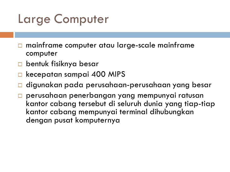Large Computer  mainframe computer atau large-scale mainframe computer  bentuk fisiknya besar  kecepatan sampai 400 MIPS  digunakan pada perusahaa