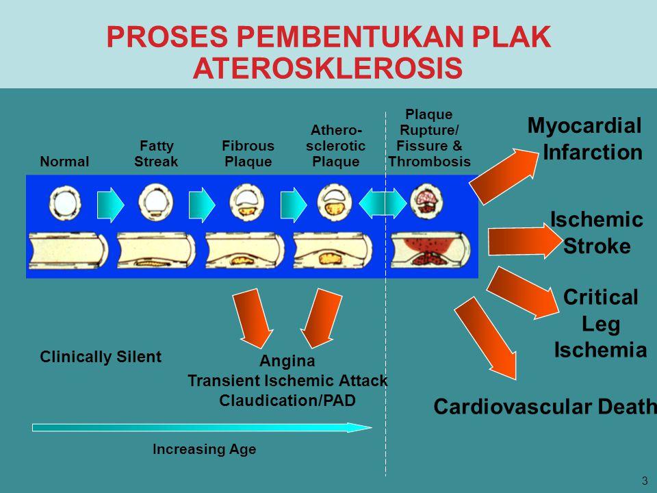 PROSES PEMBENTUKAN PLAK ATEROSKLEROSIS Normal Fatty Streak Fibrous Plaque Athero- sclerotic Plaque Plaque Rupture/ Fissure & Thrombosis Myocardial Inf