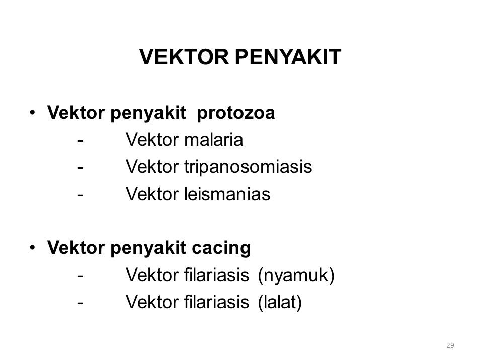 VEKTOR PENYAKIT Vektor penyakit protozoa -Vektor malaria -Vektor tripanosomiasis -Vektor leismanias Vektor penyakit cacing -Vektor filariasis (nyamuk)
