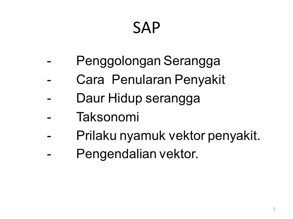 SAP -Penggolongan Serangga -Cara Penularan Penyakit -Daur Hidup serangga -Taksonomi -Prilaku nyamuk vektor penyakit. -Pengendalian vektor. 5