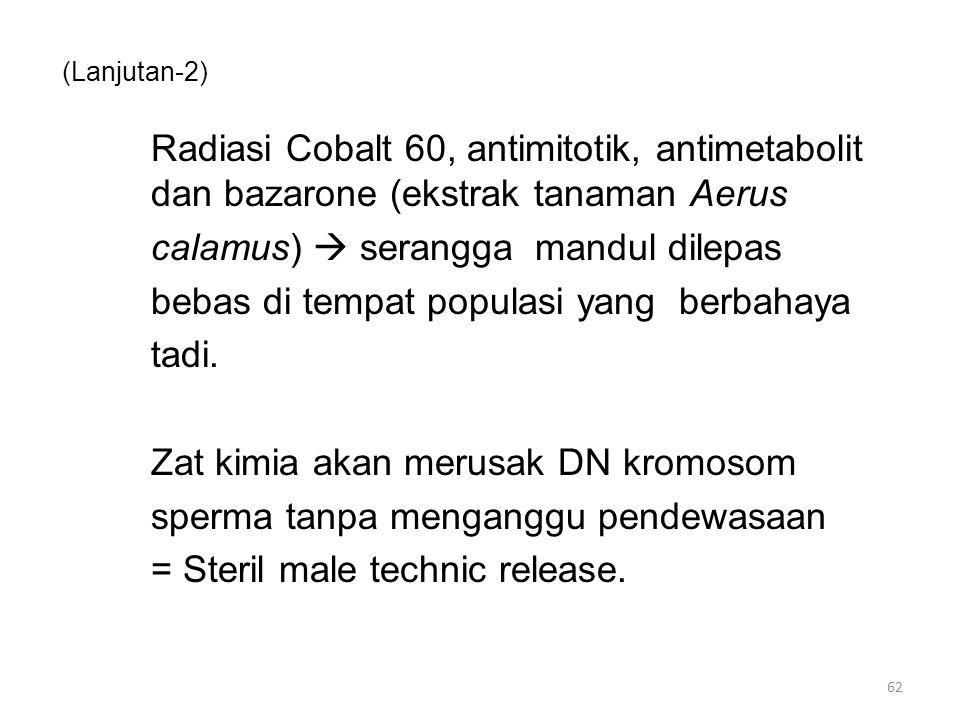 (Lanjutan-3) Radiasi mengubah susunan kromosom = Chromosome translocation Mengawinkan antar strain nyamuk bisa menyebabkan sitoplasma telur tidak dapat ditembus oleh sperma  tidak terjadi pembuahan = Cytoplasmic incompatibility 63