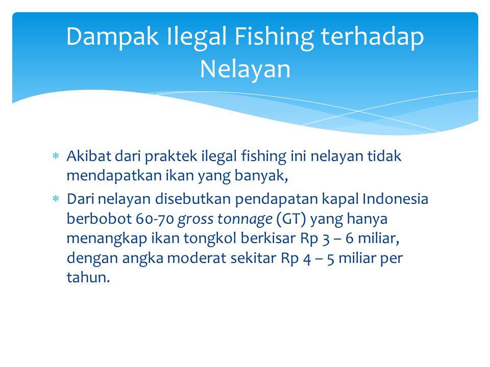  Akibat dari praktek ilegal fishing ini nelayan tidak mendapatkan ikan yang banyak,  Dari nelayan disebutkan pendapatan kapal Indonesia berbobot 60-