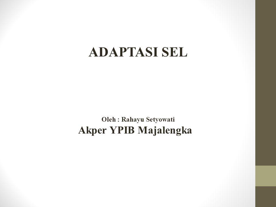 ADAPTASI SEL Oleh : Rahayu Setyowati Akper YPIB Majalengka