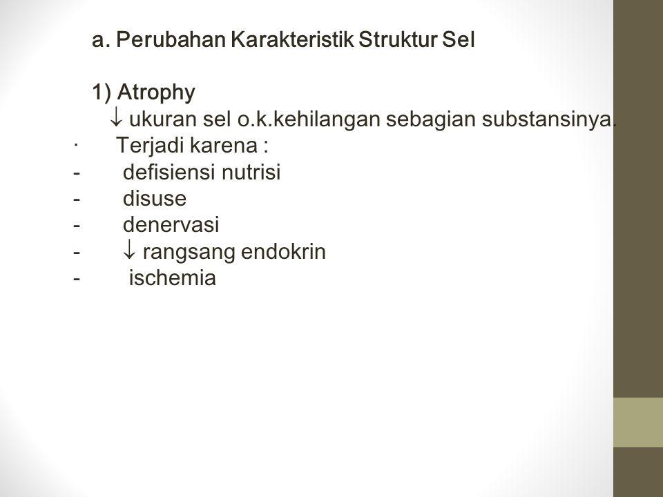 a. Perubahan Karakteristik Struktur Sel 1) Atrophy  ukuran sel o.k.kehilangan sebagian substansinya. · Terjadi karena : - defisiensi nutrisi - disuse