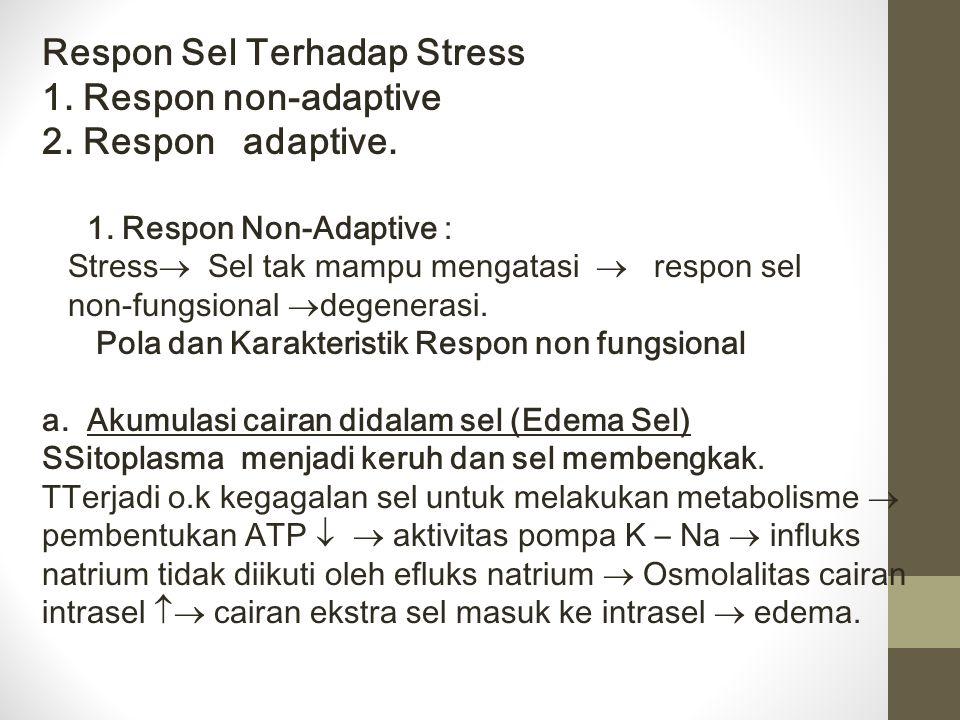 Respon Sel Terhadap Stress 1. Respon non-adaptive 2. Respon adaptive. 1. Respon Non-Adaptive : Stress  Sel tak mampu mengatasi  respon sel non-fungs