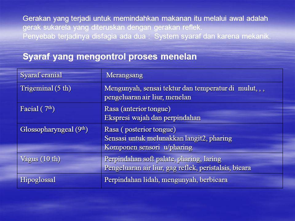 Syaraf cranial Merangsang Merangsang Trigeminal (5 th) Mengunyah, sensai tektur dan temperatur di mulut,,, pengeluaran air liur, menelan Facial ( 7 th