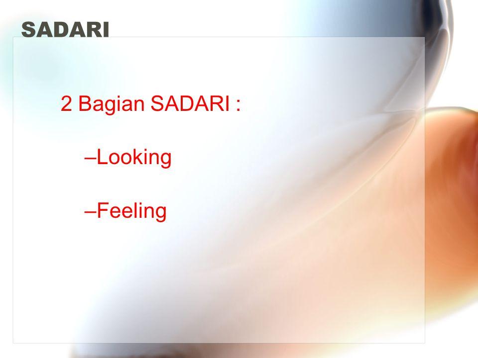 SADARI 2 Bagian SADARI : –Looking –Feeling