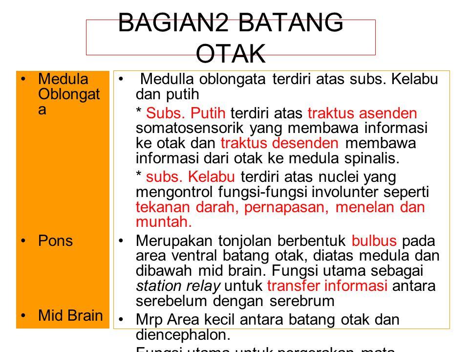 BAGIAN2 BATANG OTAK Medula Oblongat a Pons Mid Brain Medulla oblongata terdiri atas subs. Kelabu dan putih * Subs. Putih terdiri atas traktus asenden