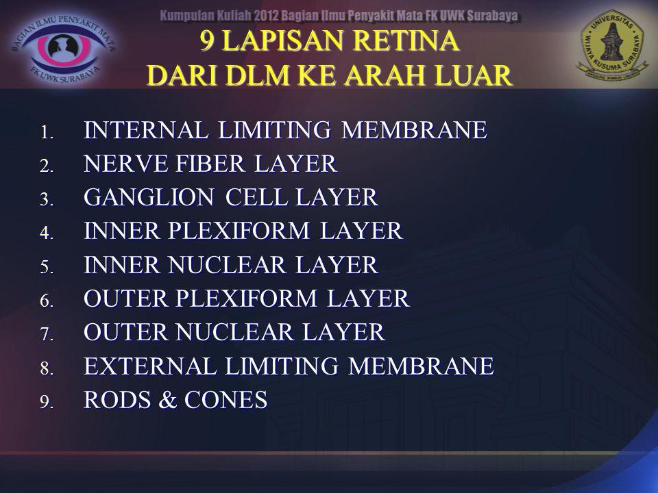 9 LAPISAN RETINA DARI DLM KE ARAH LUAR 1. INTERNAL LIMITING MEMBRANE 2. NERVE FIBER LAYER 3. GANGLION CELL LAYER 4. INNER PLEXIFORM LAYER 5. INNER NUC