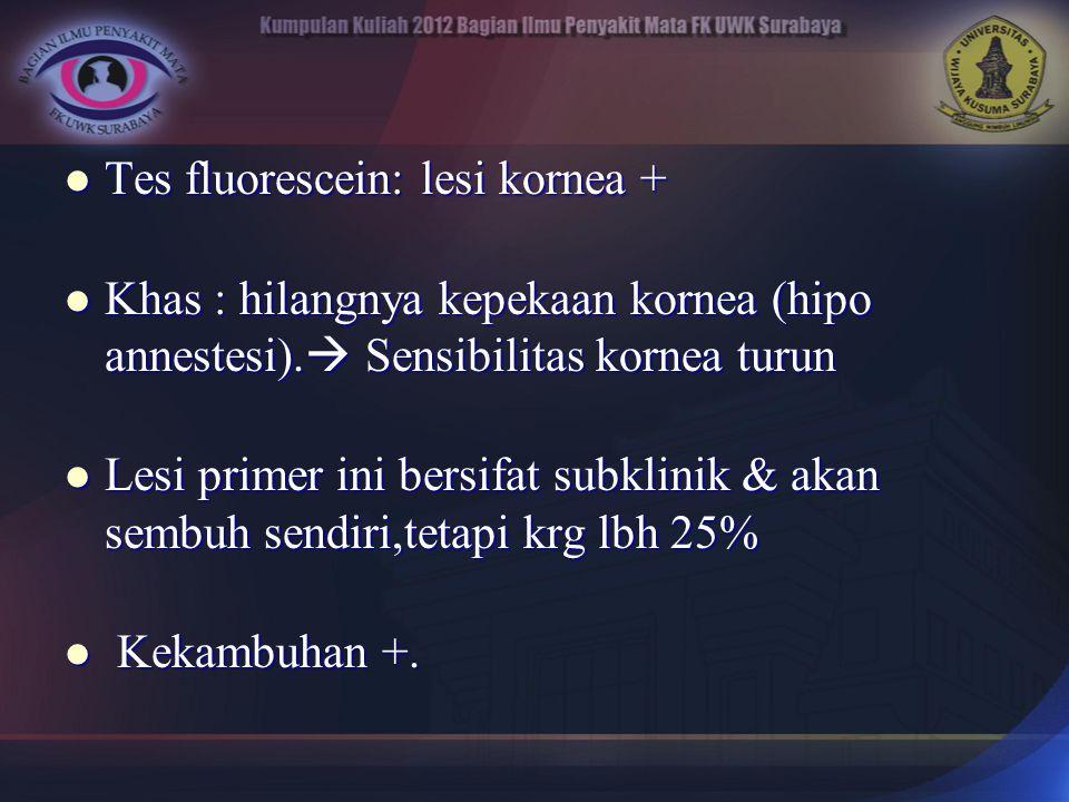 Tes fluorescein: lesi kornea + Tes fluorescein: lesi kornea + Khas : hilangnya kepekaan kornea (hipo annestesi).  Sensibilitas kornea turun Khas : hi