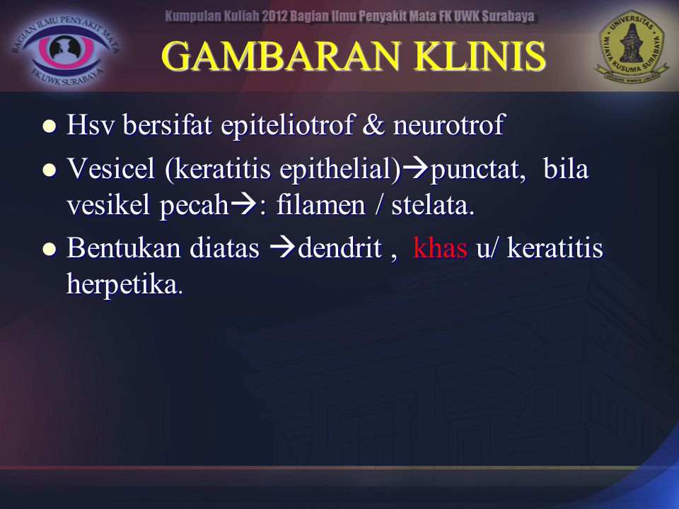 GAMBARAN KLINIS Hsv bersifat epiteliotrof & neurotrof Hsv bersifat epiteliotrof & neurotrof Vesicel (keratitis epithelial)  punctat, bila vesikel pec
