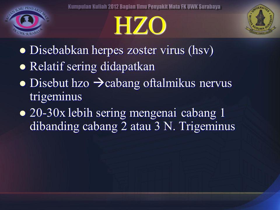 HZO Disebabkan herpes zoster virus (hsv) Disebabkan herpes zoster virus (hsv) Relatif sering didapatkan Relatif sering didapatkan Disebut hzo  cabang