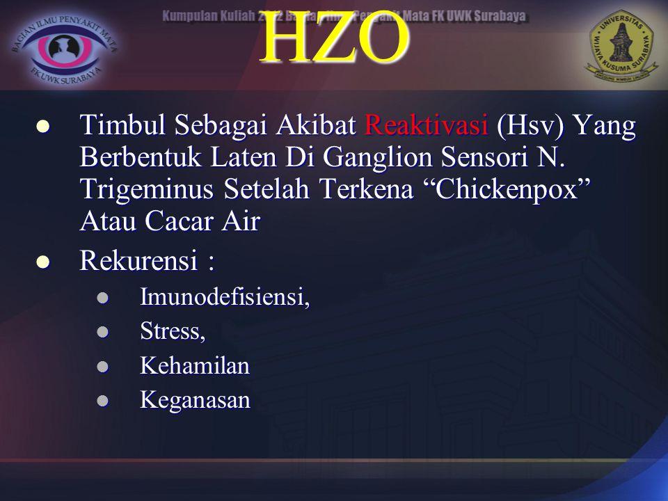 """HZO Timbul Sebagai Akibat Reaktivasi (Hsv) Yang Berbentuk Laten Di Ganglion Sensori N. Trigeminus Setelah Terkena """"Chickenpox"""" Atau Cacar Air Timbul S"""