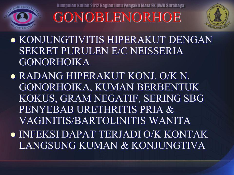 GONOBLENORHOE KONJUNGTIVITIS HIPERAKUT DENGAN SEKRET PURULEN E/C NEISSERIA GONORHOIKA KONJUNGTIVITIS HIPERAKUT DENGAN SEKRET PURULEN E/C NEISSERIA GON