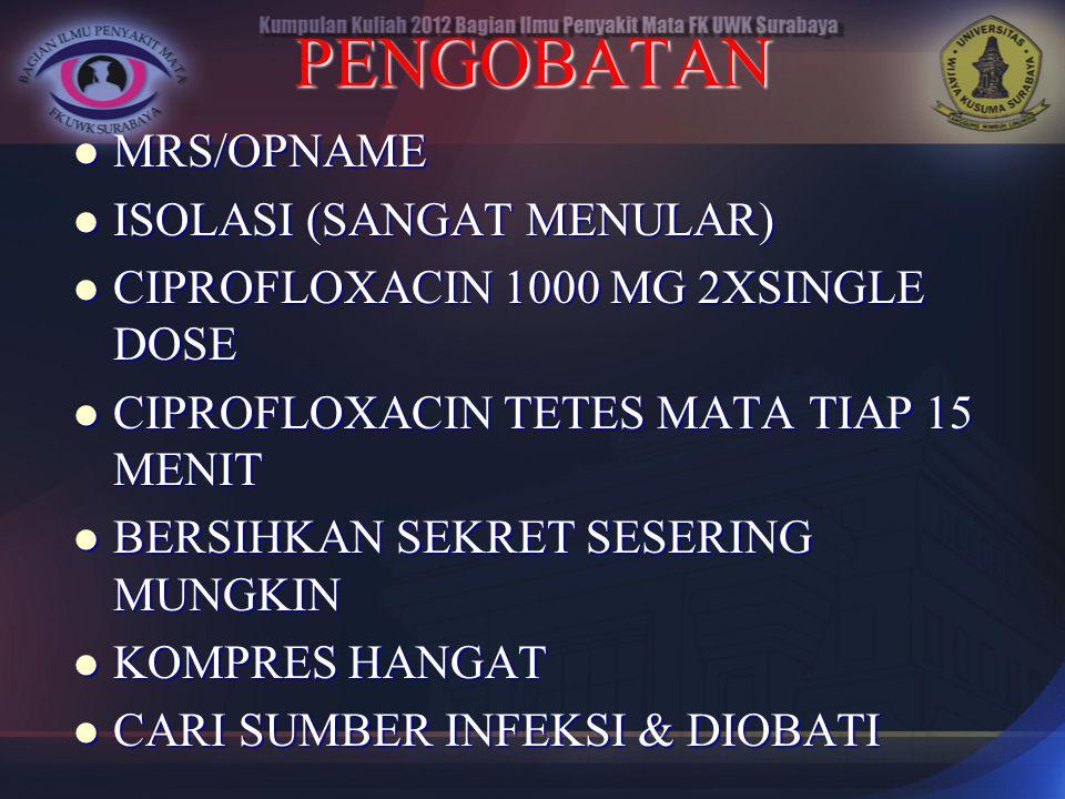 PENGOBATAN MRS/OPNAME MRS/OPNAME ISOLASI (SANGAT MENULAR) ISOLASI (SANGAT MENULAR) CIPROFLOXACIN 1000 MG 2XSINGLE DOSE CIPROFLOXACIN 1000 MG 2XSINGLE
